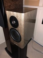 Dynaudio Special 40's - Grey Birch For Sale - US Audio Mart