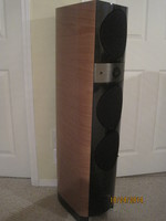 Focal Unknown $5300.0