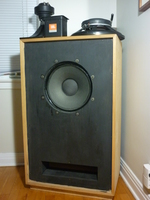 1970 Tannoy Gold Monitor LSU 15 in Custom 150 lb cabs