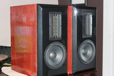 EAM custom bookshelf speaker.