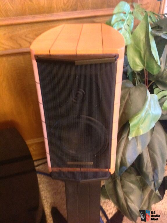 SONUS FABER AUDITOR M's With Factory stands Photo #1040591