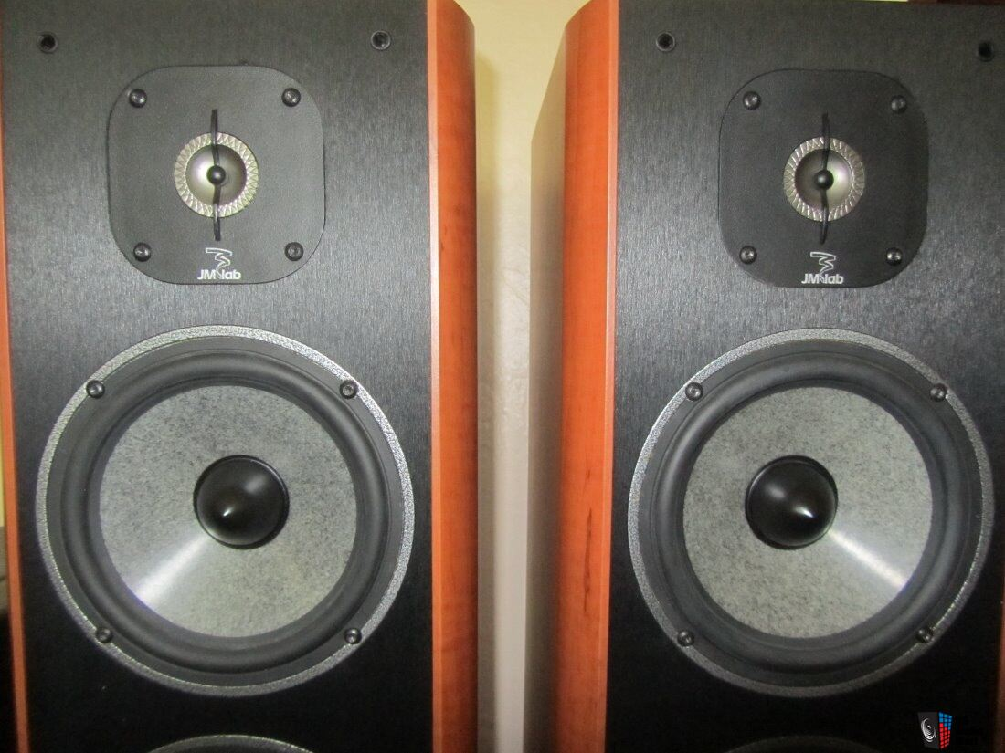 Focal / JM Lab Cobalt 816 Stereo Speakers Photo #1439210