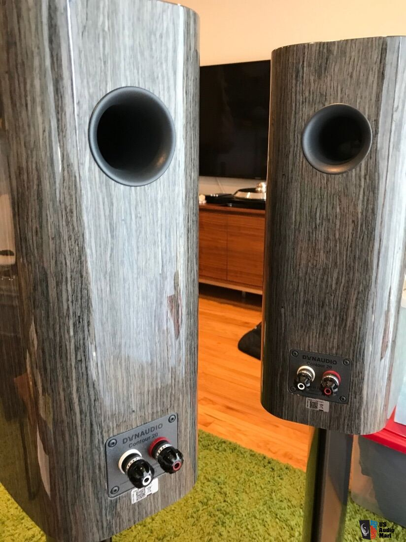 Dynaudio Contour C20, Gloss Grey Oak w/stand 6's and